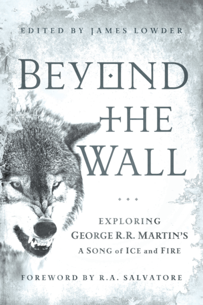 Beyond the Wall book cover
