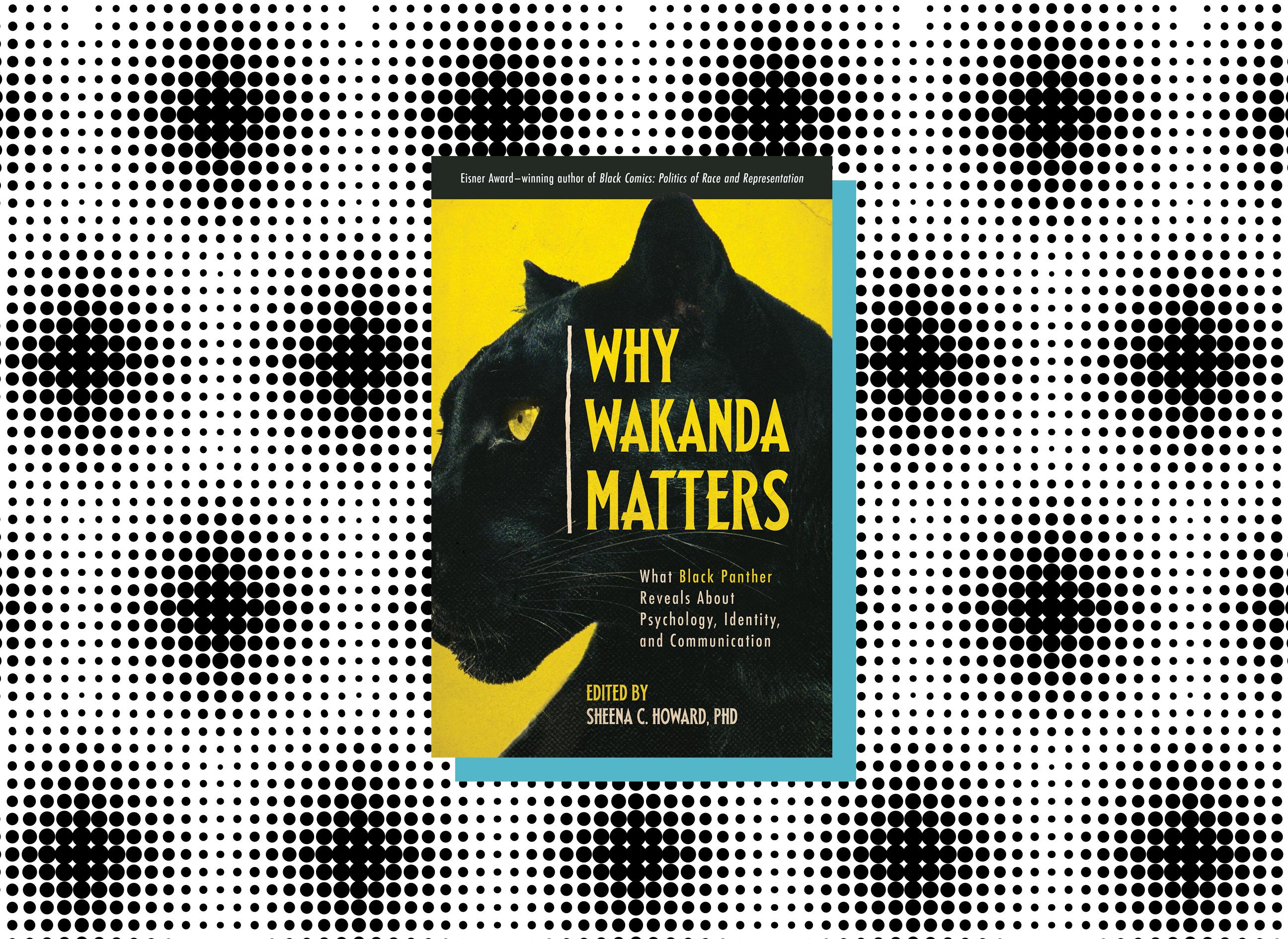 Why Wakanda Matters book cover